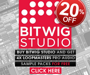 300-x-250-pib-bitwig-promo2