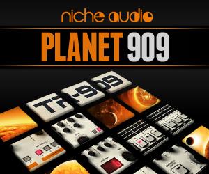 Niche-planet-909-300-x-250