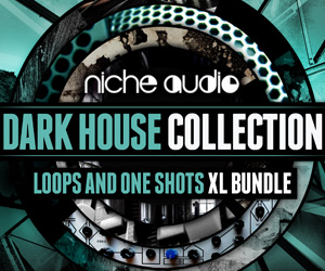 Niche-dark-house-collection-300-x-250