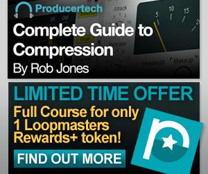 300 x 250 lm compression rewards