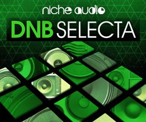 Niche dnb selecta 300 x 250
