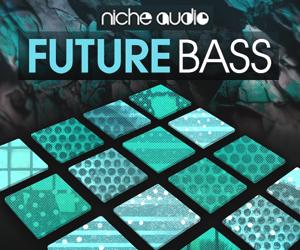 Niche future bass 300 x 250