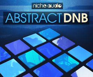 Niche abstract dnb 300 x 250