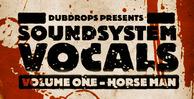 Soundsystemvocals1 banner