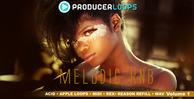 Melodic rnb vol 1 1000x500