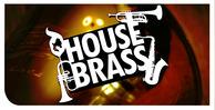 Dgs_house-brass_01_512