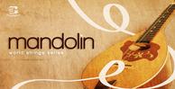 Mandolin_1000x512