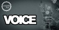 Voice 1000x512