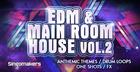 EDM & Main Room House Vol. 2