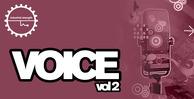 Voice2 1000x512