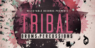 Tribal-drums-and-percs-512