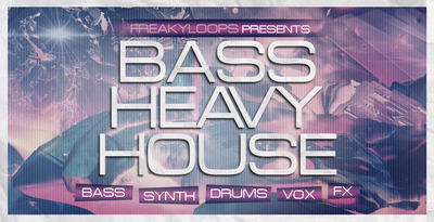 Bass heavy house 1000x512