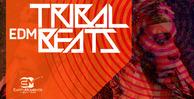 Tribalbeats_1000x512_300dpi