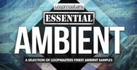 Lm_essential_ambient_1000_x_512