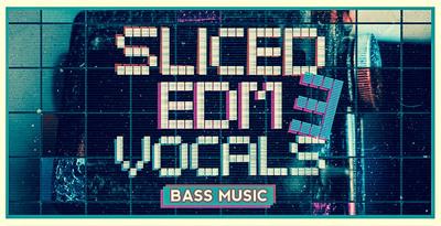 Sliced edm vocals vol 3 1000x512