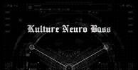 Kultureneurobass-maincover1000x512