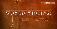 Worldviolins512