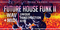 Triad sounds   future house funk ii 1000x512