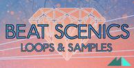 Beat scenics banner