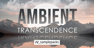 Rv ambient transcendence  electronica 1000 x 512