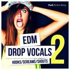 64_edm-drop-vocals2_1000x1000