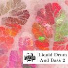 Liquid dnb 2 1kx1k