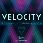 Velocity1000