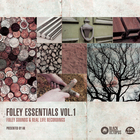 Foley essentials by ak   main cover 1000 x 1000