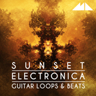 Sunset electronica 1000