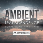 Rv ambient transcendance electronica 1000 x 1000