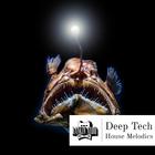 Deeptechhousem 1k 1k
