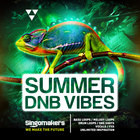 Singomakers summer dnb vibes  bass  loops  melody  loops  drum  loops  one  shots  vocals  fxs patches inspiration 1000 1000 web